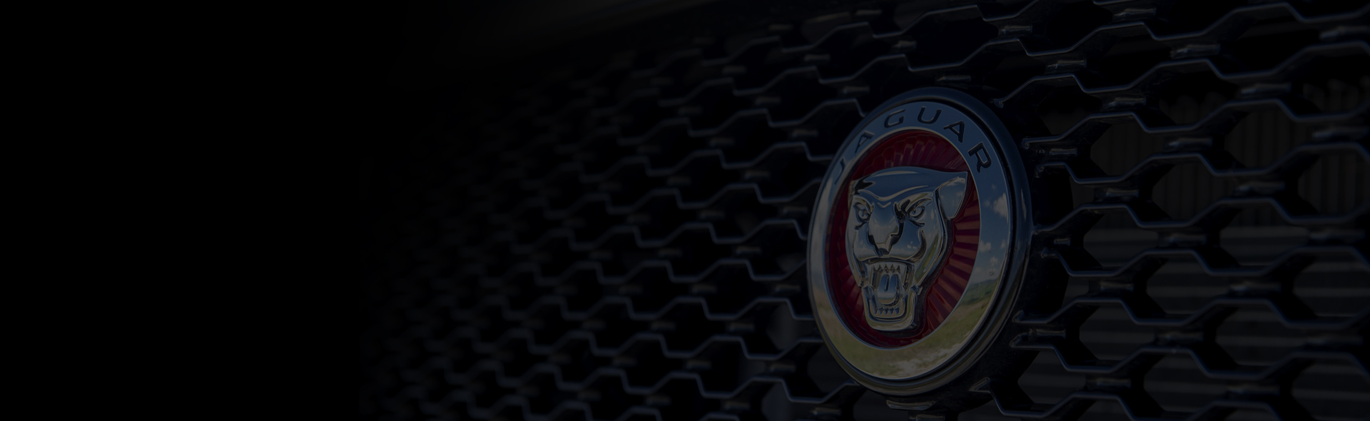 Banner Jaguar